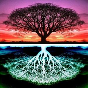 treeoflife-300x300